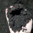 Mushroom Compost – Bulk