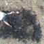 Premium Hardwood Mulch – Bulk