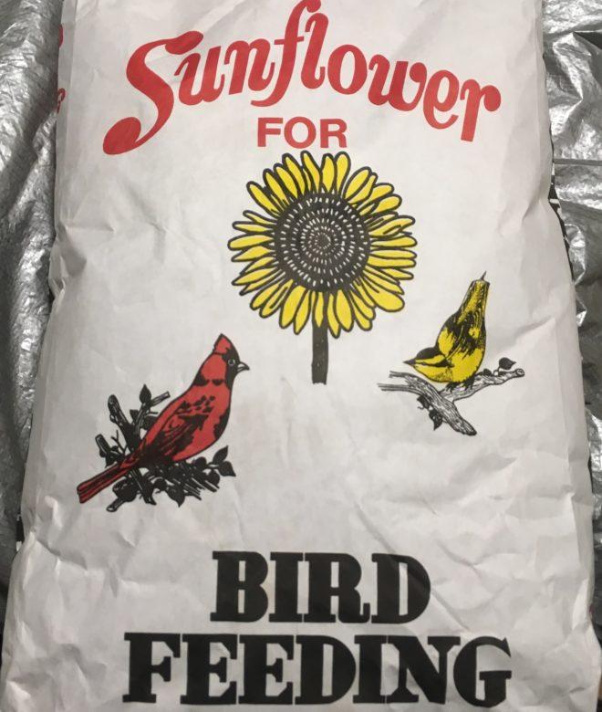 Black Oil Sunflower Seed 50# Bag